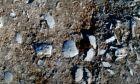 Σπάνια ανακάλυψη: Ο χωματόδρομος χωρίς όνομα με χιλιάδες απολιθωμένα κοχύλια εκατομμυρίων ετών