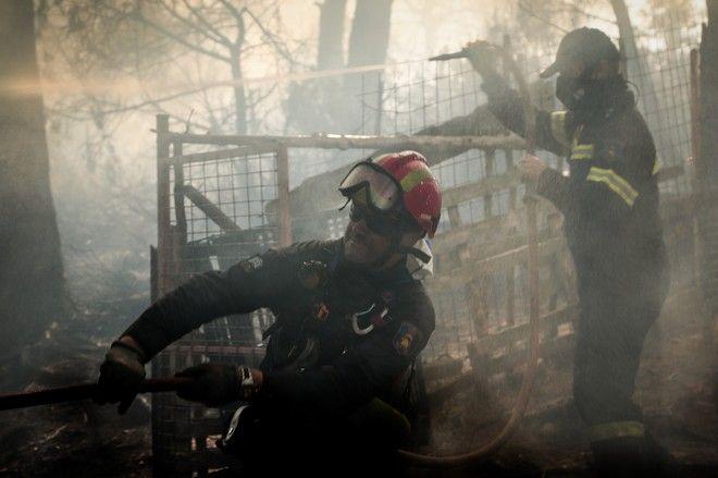 Για 2η ημέρα οι πυροσβεστικές δυνάμεις συνεχίζουν την μάχη για την κατάσβεση της μεγάλης πυρκαγιάς στην Εύβοια. Αναζωπύρωση κοντά στο χωρίο Μακρυμάλλη.