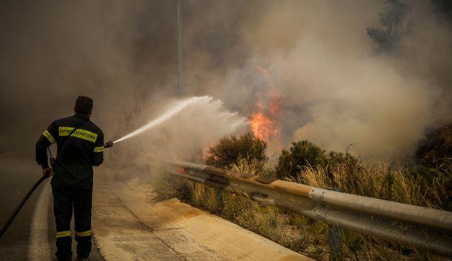Οι πυροσβέστες παλεύουν με τις φλόγες. Η Πυροσβεστική διπλασίασε τις δυνάμεις της στο σημείο - Φωτογραφία αρχείου