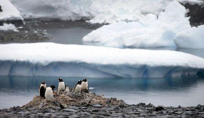 """Καταρρέει ο """"Παγετώνας της Αποκάλυψης""""- Φόβοι για παγκόσμια αύξηση της στάθμης των θαλασσών"""