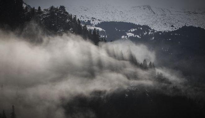 Σύννεφο ομίχλης καλύπτει μέρος του ελατόδασους στο Περτούλι Τρικάλων