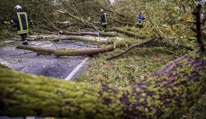 A fire brigade clears the street after heavy storms  near Wismar, Germany, Thursday, Oct. 5, 2017.  (Jens Buettner/dpa via AP)