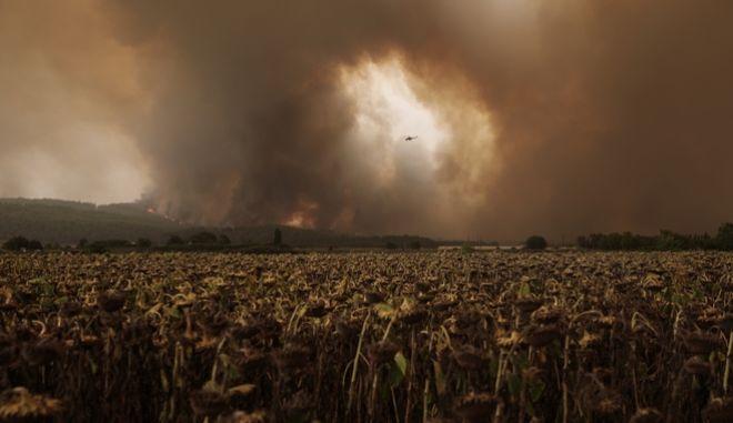 Η μεγάλη φωτιά στην Εύβοια