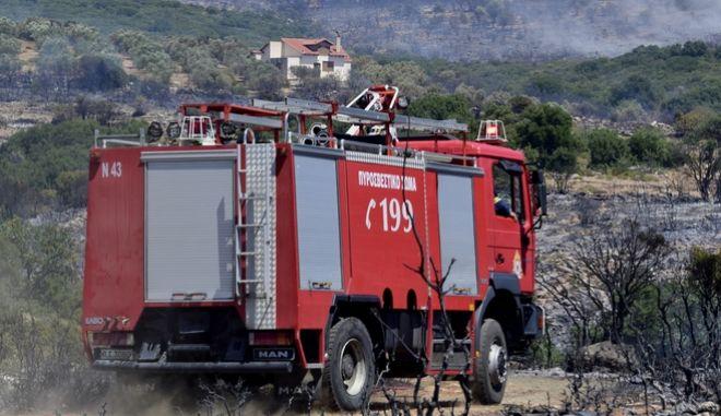 Συναγερμός στην Αταλάντη - Φωτιά 200 μέτρα από σπίτια