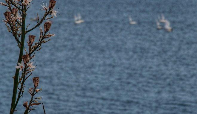 Πρώτες ημέρες της άνοιξης σε παραλία της Αττικής