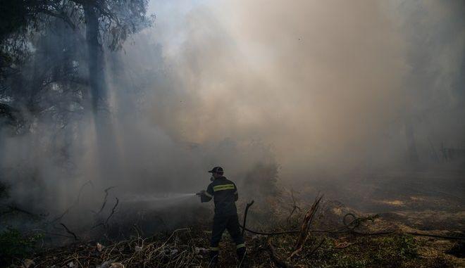 Δυνάμεις της πυροσβεστικής επιχειρούν σε φωτιά - Φωτό αρχείου