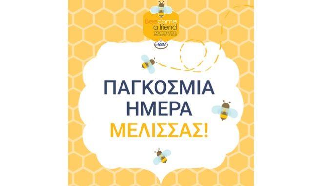Πρώτο μέλημά μας είναι οι μέλισσες!