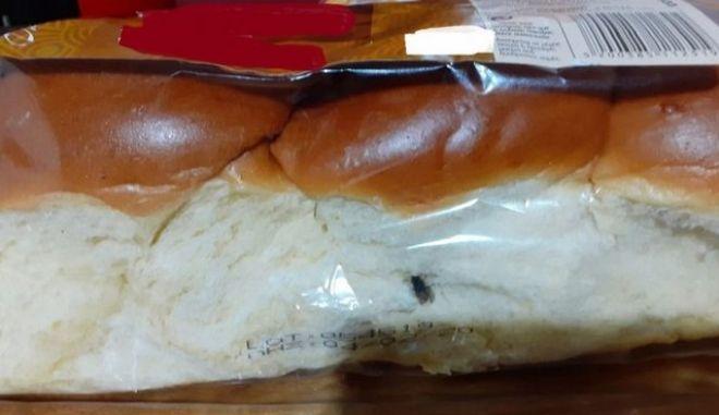 Λάρισα: Βρήκε μύγα σε τσουρέκι γνωστής αλυσίδας σούπερ μάρκετ