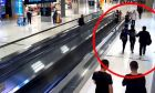 Απαγάγουν τουρίστρια σε πολυσύχναστο αεροδρόμιο χωρίς να καταλάβει κανείς τίποτα