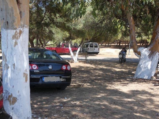 Όργιο αυθαιρεσίας στα Χανιά: Τροχόσπιτα και αγροτικά μέσα στα δέντρα