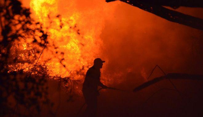 ΑΡΓΟΣ-Πυρκαγιά ξέπασε στο βάλτο στη περιοχή  της Αγίας Άννας  του δήμου Άργους-Μυκηνών σήμερα ,Σάββατο 14 Οκτωβρίου,το απόγευμα στις 18.30 και έκαψε καλαμιές ,δένδρα και χαμηλή βλάστηση σε έκταση  πέντε στρεμμάτων.Για την κατάσβεση της φωτιάς έσπευσαν τρία πυροσβεστικά οχήματα της Πυροσβεστικής  Άργους  με οκτώ άνδρες.(Eurokinissi)