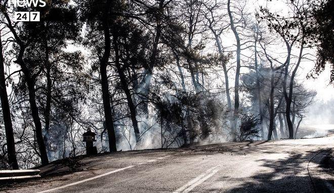Στάχτη και αποκαΐδια ο Κάλαμος: Η εικόνα μετά τη φωτιά kalamos11c