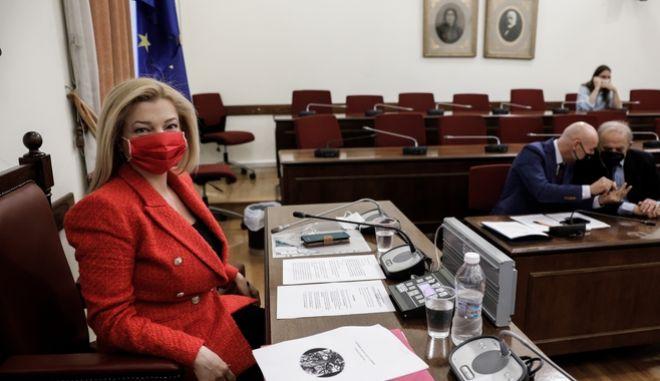 Κλαρίνα και δημοτικά τραγούδια σε επιτροπή της Βουλής