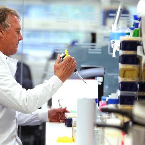 Μελέτη του καρκίνου στο εργαστήριο
