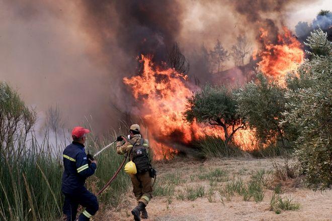 Φωτιά στο Χελιδόνι Ηλείας