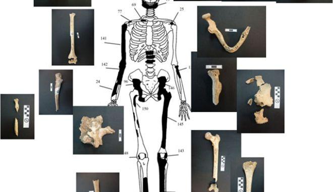 Αμφίπολη: Γιατί ταυτίστηκαν μόλις τα 157 από τα 550 οστά