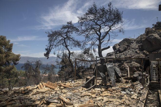 Φωτιά στα Γεράνεια Όρη: Σοκάρουν οι εικόνες της απόλυτης καταστροφής σε δάσος Natura