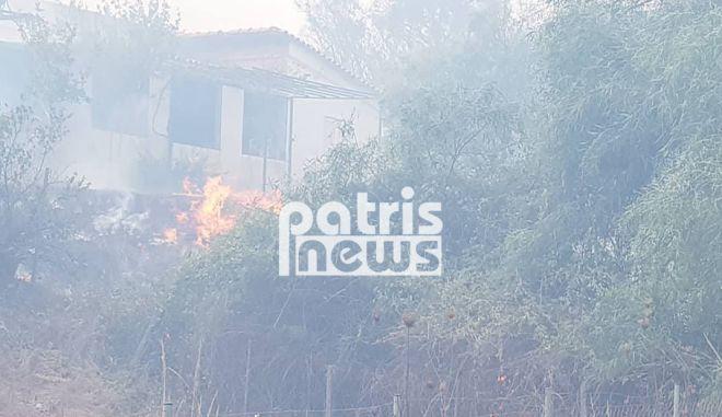 """Φωτιά στην Ηλεία: Οι φλόγες """"έγλειψαν"""" σπίτια - Κάηκαν δυο αποθήκες"""