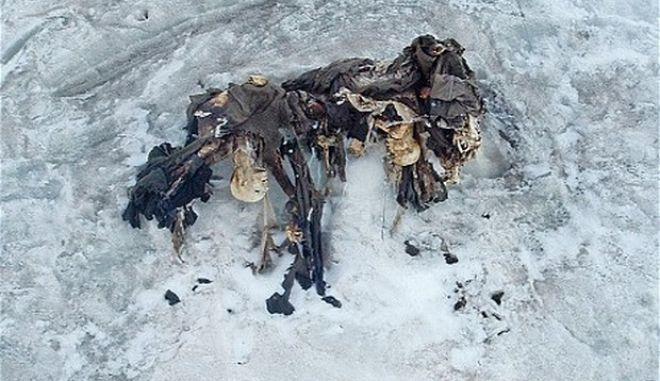 """Ιταλικές Άλπεις: Το λιώσιμο των πάγων """"ξέθαψε"""" στρατιώτες - μούμιες του Πρώτου Παγκοσμίου Πολέμου"""