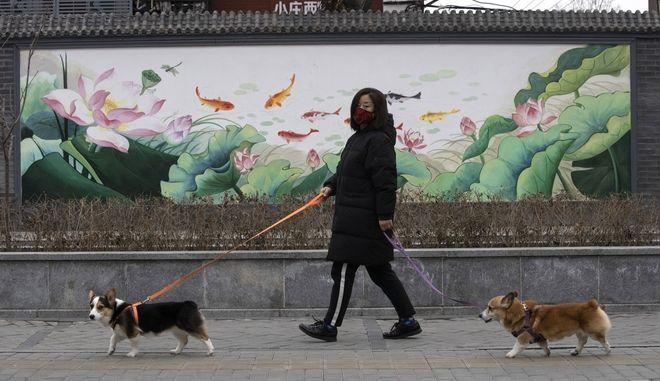 Κορονοϊός στην Κίνα