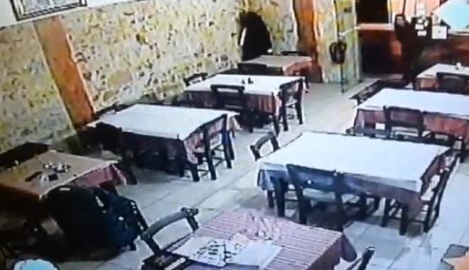 Βίντεο: Μπούκαρε σε ταβέρνα, έκλεψε κινητό και εξαφανίστηκε