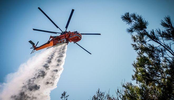 Πυρκαγιά σε σε δασική έκταση
