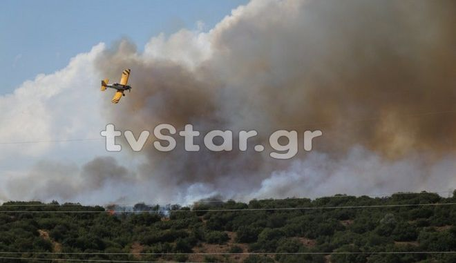 Εικόνα από τη φωτιά στη Φθιώτιδα