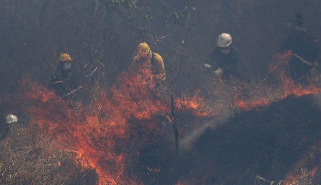 Επι ένα μήνα οι φωτιές καταστρέφουν τον Αμαζόνιο.