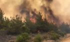Μεγάλη δασική πυρκαγιά μαίνεται στη χερσόνησο της Καλλίπολης