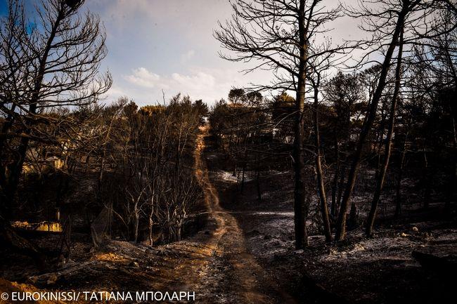 Το Μάτι μετά τη φονική πυρκαγιά