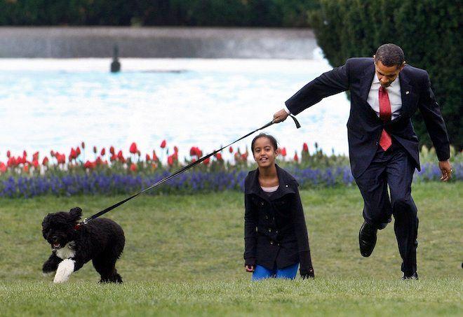 Ο Πρόεδρος Μπαράκ Ομπάμα και η κόρη του Μάλια παίζουν με το νέο σκυλί τους Μπο, στο γκαζόν του Λευκού Οίκου, 14 Απριλίου 2009