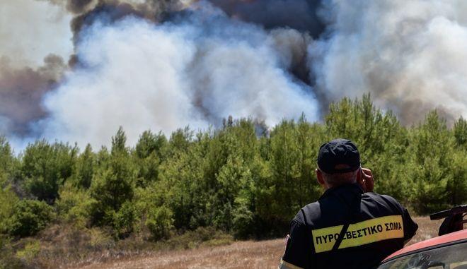 Πυρκαγιά σε δασική έκταση στο Γραμματικό Ηλείας την Παρασκευή 24 Ιουλίου 2020. (EUROKINISSI/ILIALIVE.GR/ΓΙΑΝΝΗΣ ΣΠΥΡΟΥΝΗΣ)