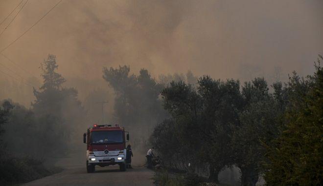 Πυρκαγιά σε δασική έκταση στην περιοχή Κοντοδεσπότι στο Δήμο Διρφύων-Μεσσαπίων Εύβοιας