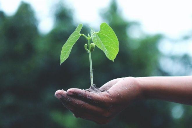 Η πανδημία ως «επιταχυντής» για τη βιώσιμη ανάπτυξη