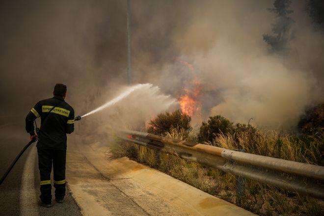 Οι πυροσβέστες παλεύουν με τις φλόγες. Η Πυροσβεστική διπλασίασε τις δυνάμεις της στο σημείο.