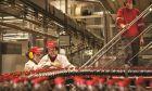 Coca Cola Τρία Έψιλον: Χρονιά σημαντικής ανάπτυξης με αύξηση όγκου πωλήσεων το 2018