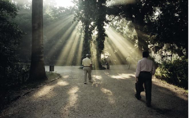 Το σχέδιο του δήμου Αθηναίων για την αναβάθμιση και ανάδειξη του Εθνικού Κήπου