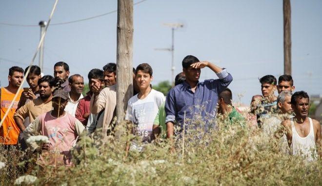 Εργάτες στη Μανωλάδα Ηλείας