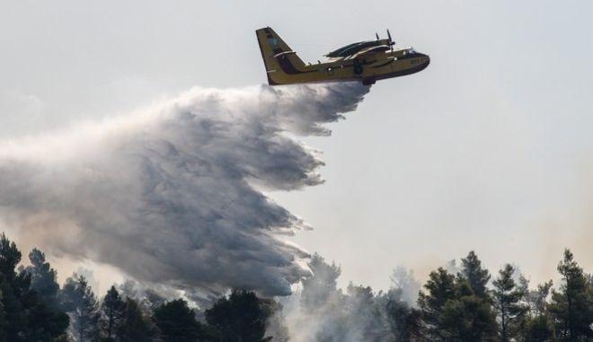 Συνεχίζονται για 2η μέρα οι προσπάθειες κατάσβεσης της μεγάλης πυρκαγιάς στην Εύβοια, Τετάρτη 14 Αυγούστου 2019.