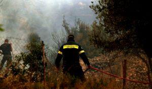 Κέρκυρα: Σε ύφεση μετά από 30 ώρες η φωτιά στον Παντοκράτορα