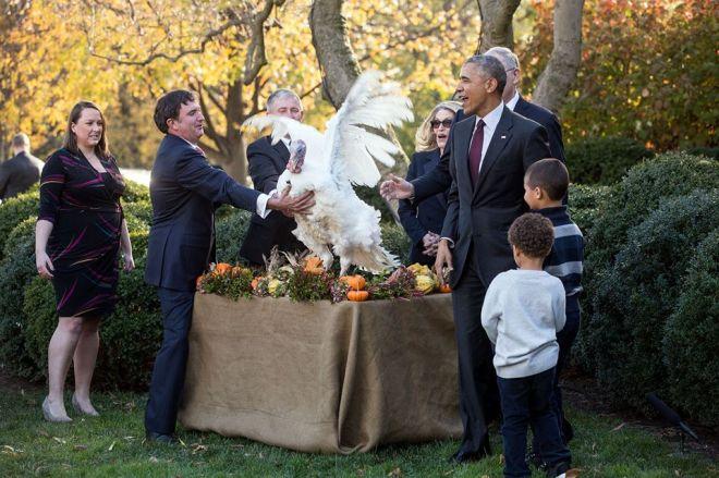 Ο Ομπάμα δίνει χάρη στην τελευταία γαλοπούλα