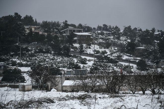 Χιονόπτωση στην Αγία Σωτήρα Μάνδρας.