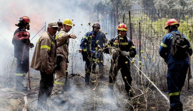 Πυρκαγιά στην περιοχή Κεχριές Κορινθίας (φωτογραφία αρχείου)