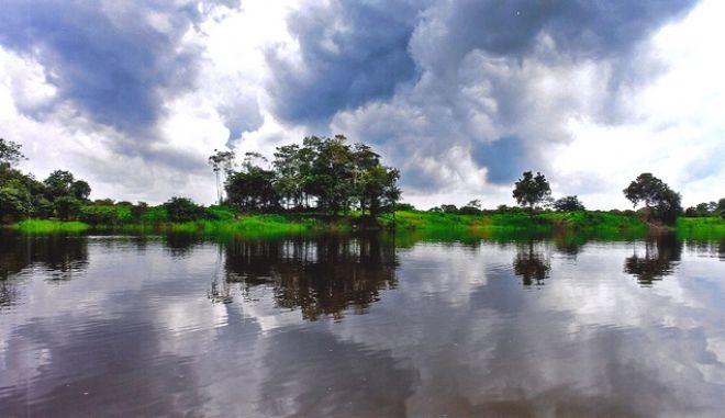 Αμαζόνιος: Γιατί η καταστροφή του μας επηρεάζει όλους