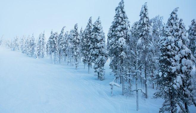 Νορβηγός προσπάθησε να γλιτώσει την καραντίνα κάνοντας σκι για 40 χλμ