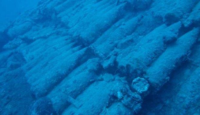 Όλμοι στον βυθό της θάλασσας - Φωτογραφία αρχείου
