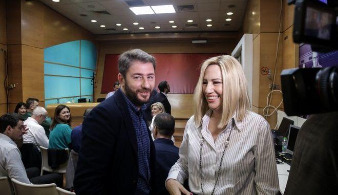 Η Φώφη Γεννηματά και ο Νίκος Ανδρουλάκης