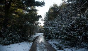 Χιόνια και κακοκαιρία στο Διόνυσο