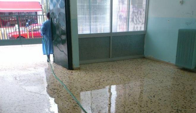 Αγρίνιο: Λύθηκε το μυστήριο με τις επιθέσεις ναφθαλίνης στα σχολεία