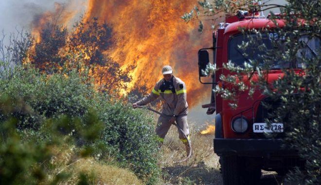 Πυροσβέστης σε φωτιά στην Επίδαυρο (Αρχείο)